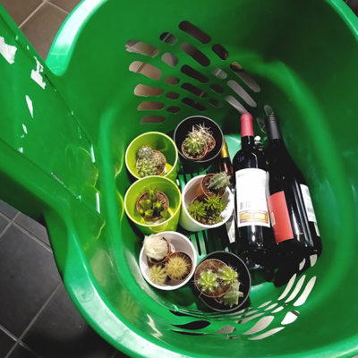 shopping-cart-wine-and-cacti
