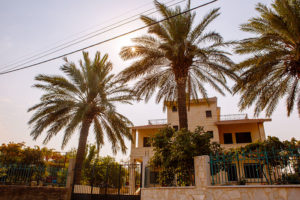 palm-trees-in-front-of-home-hamat-lebanon-travel-pictures